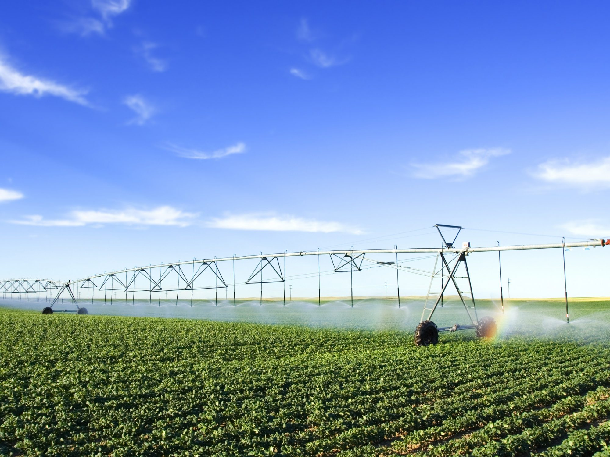 Irrigation on a farm in Zimbabwe